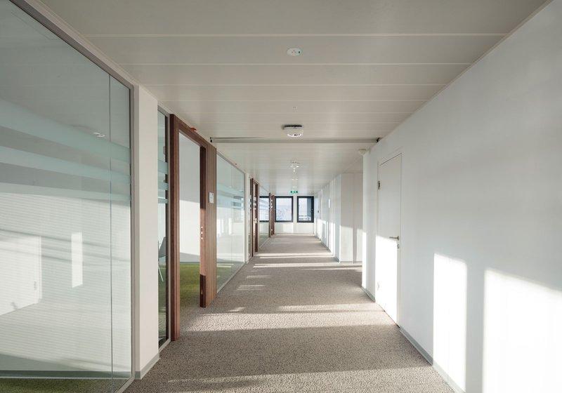 Prozirni stakleni zidovi koji se izmjenjuju s toplim drvenim pločama stvaraju ugodno radno okruženje. Foto: ATP/Kuball