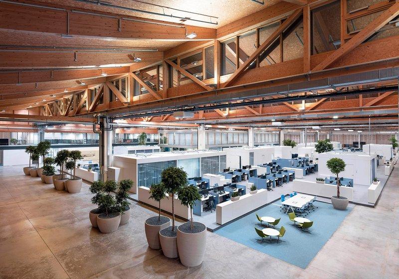 Auf der großzügigen und intelligent strukturierten Fläche finden sich Arbeitsplätze und Ruhezonen genauso wie Zonen für Meetings und konzentriertes Arbeiten. Foto: ATP/Pierer